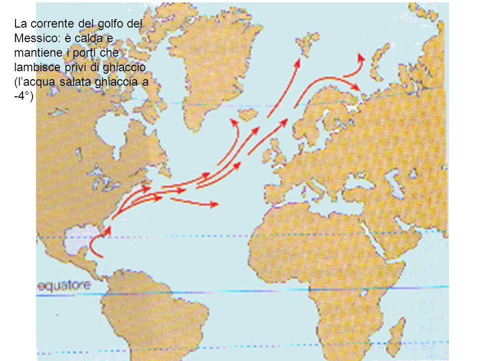 La corrente del golfo del Messico: è calda e mantiene i porti che lambisce privi di ghiaccio (lacqua salata ghiaccia a -4°)