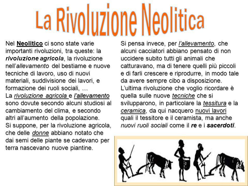 Nel Neolitico ci sono state varie importanti rivoluzioni, tra queste: la rivoluzione agricola, la rivoluzione nellallevamento del bestiame e nuove tec