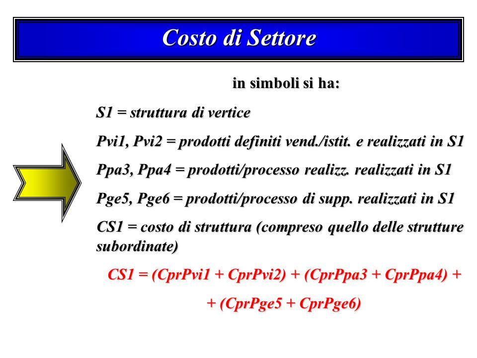 Costo di Settore in simboli si ha: in simboli si ha: S1 = struttura di vertice Pvi1, Pvi2 = prodotti definiti vend./istit. e realizzati in S1 Ppa3, Pp