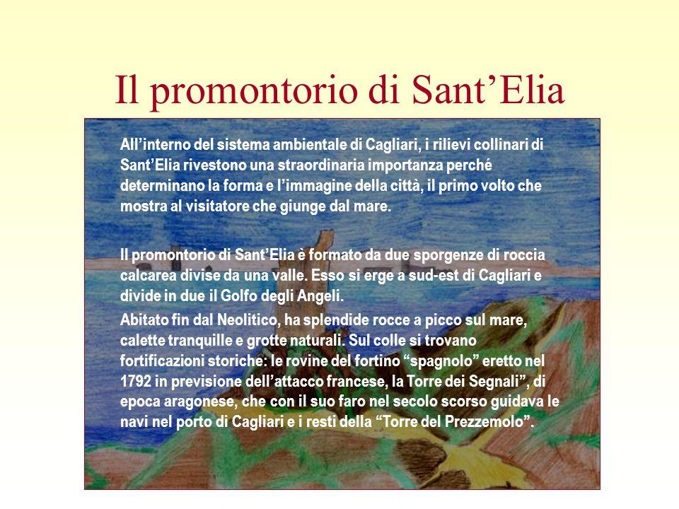 Il promontorio di SantElia Allinterno del sistema ambientale di Cagliari, i rilievi collinari di SantElia rivestono una straordinaria importanza perché determinano la forma e limmagine della città, il primo volto che mostra al visitatore che giunge dal mare.