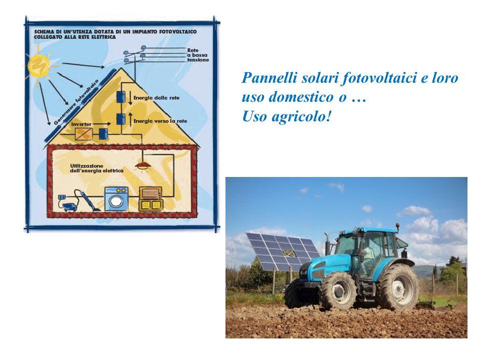 Pannelli solari fotovoltaici e loro uso domestico o … Uso agricolo!