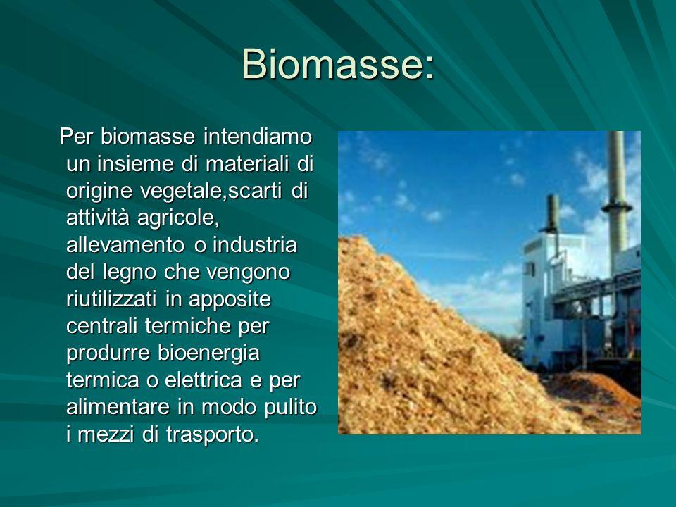 Biomasse: Per biomasse intendiamo un insieme di materiali di origine vegetale,scarti di attività agricole, allevamento o industria del legno che vengo