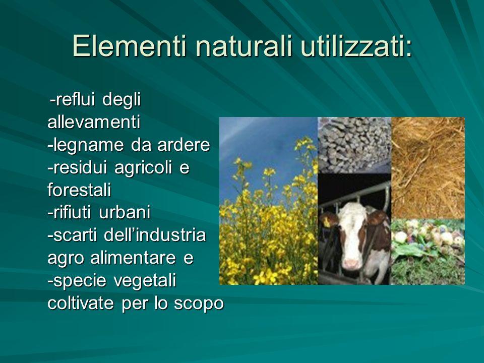 Elementi naturali utilizzati: -reflui degli allevamenti -legname da ardere -residui agricoli e forestali -rifiuti urbani -scarti dellindustria agro al