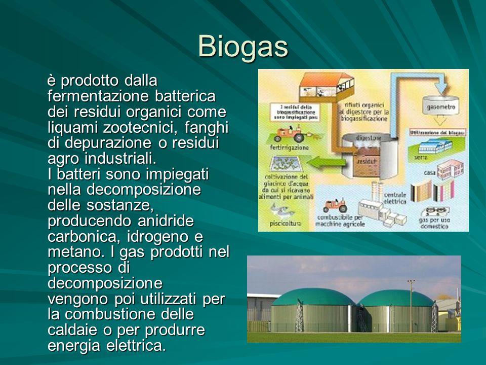 Biogas è prodotto dalla fermentazione batterica dei residui organici come liquami zootecnici, fanghi di depurazione o residui agro industriali. I batt