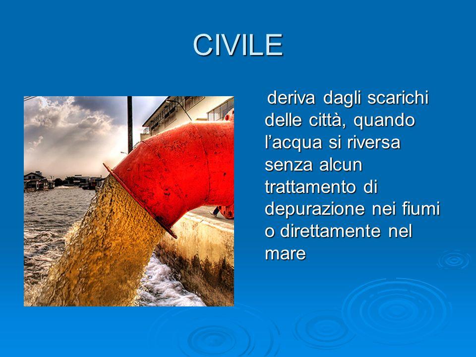 CIVILE deriva dagli scarichi delle città, quando lacqua si riversa senza alcun trattamento di depurazione nei fiumi o direttamente nel mare deriva dag