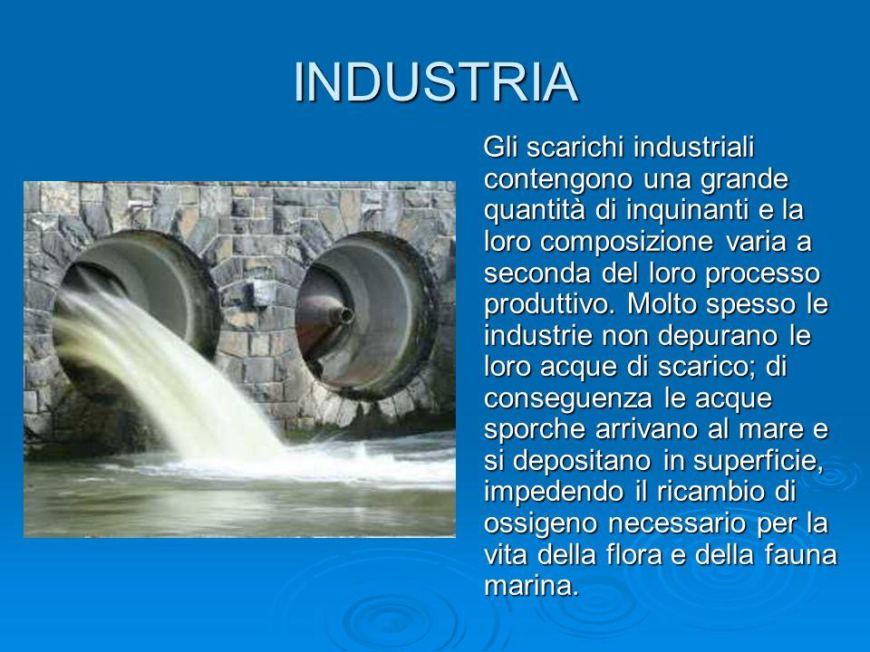 INDUSTRIA Gli scarichi industriali contengono una grande quantità di inquinanti e la loro composizione varia a seconda del loro processo produttivo. M