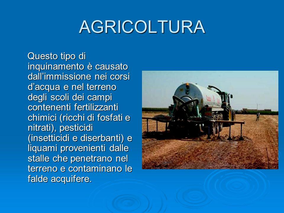 AGRICOLTURA Questo tipo di inquinamento è causato dallimmissione nei corsi dacqua e nel terreno degli scoli dei campi contenenti fertilizzanti chimici