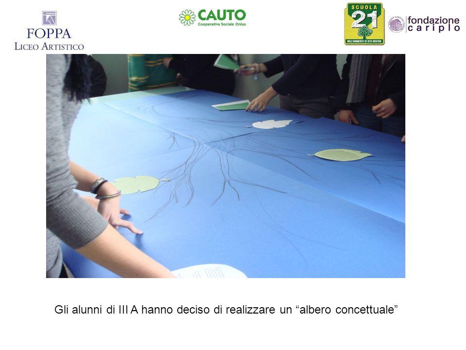 Gli studenti, dopo aver realizzato la base disegnata di un tronco dalbero, hanno ricreato la fronda con lapplicazione di foglie che racchiudono i concetti da loro selezionati