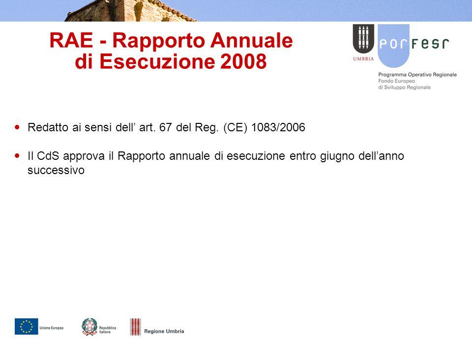 RAE - Rapporto Annuale di Esecuzione 2008 Redatto ai sensi dell art.