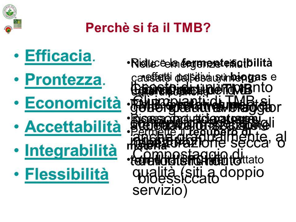 Sviluppo del TMB