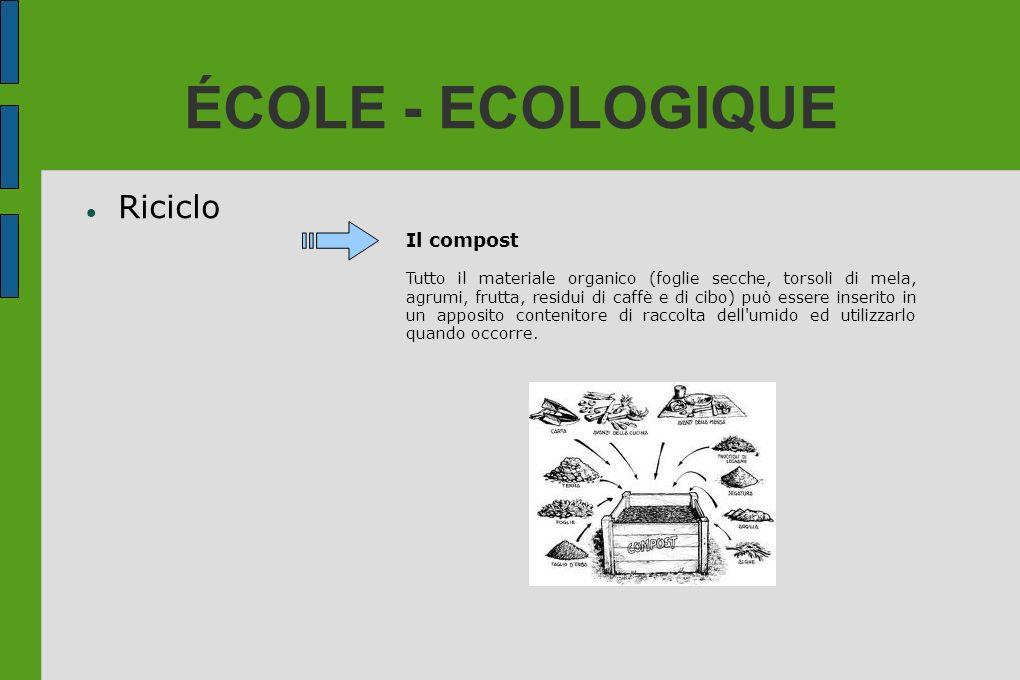 ÉCOLE - ECOLOGIQUE Riciclo Il compost Tutto il materiale organico (foglie secche, torsoli di mela, agrumi, frutta, residui di caffè e di cibo) può ess