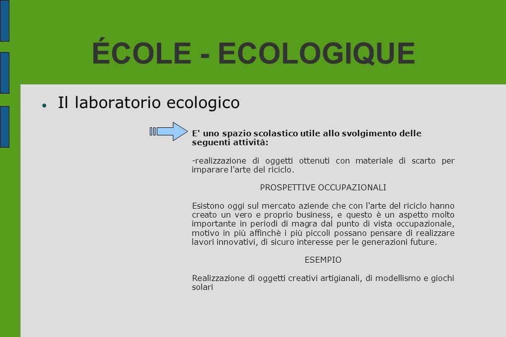ÉCOLE - ECOLOGIQUE Il laboratorio ecologico E' uno spazio scolastico utile allo svolgimento delle seguenti attività: -realizzazione di oggetti ottenut