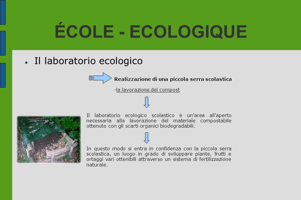 ÉCOLE - ECOLOGIQUE Il laboratorio ecologico Realizzazione di una piccola serra scolastica -la lavorazione del compost Il laboratorio ecologico scolast