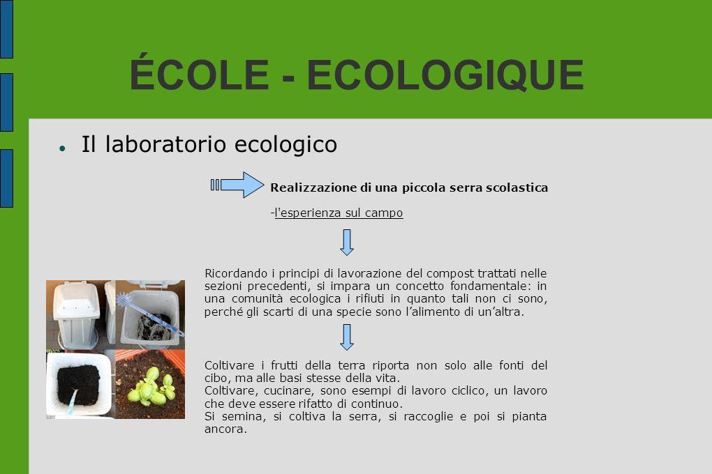 ÉCOLE - ECOLOGIQUE Il laboratorio ecologico Realizzazione di una piccola serra scolastica -l'esperienza sul campo Ricordando i principi di lavorazione