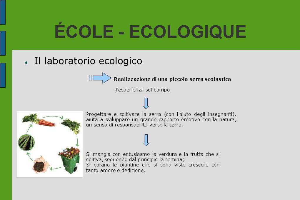 ÉCOLE - ECOLOGIQUE Il laboratorio ecologico Realizzazione di una piccola serra scolastica -l'esperienza sul campo Progettare e coltivare la serra (con