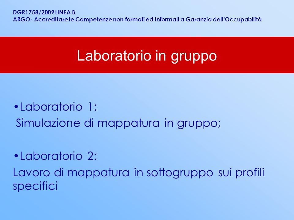 Laboratorio in gruppo Laboratorio 1: Simulazione di mappatura in gruppo; Laboratorio 2: Lavoro di mappatura in sottogruppo sui profili specifici DGR17