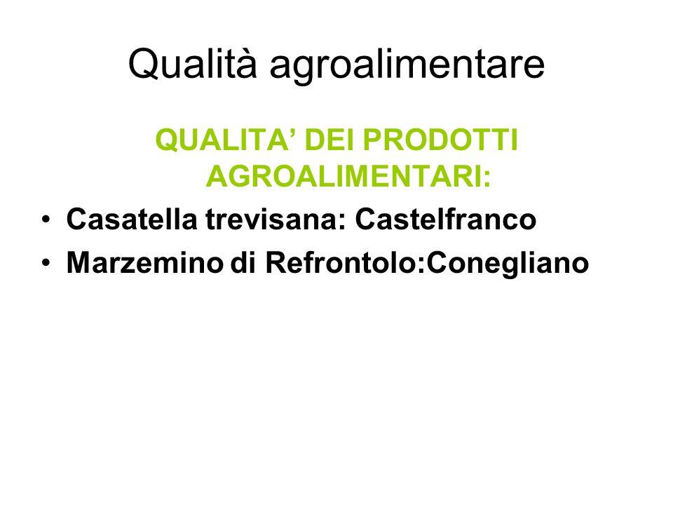 Qualità agroalimentare QUALITA DEI PRODOTTI AGROALIMENTARI: Casatella trevisana: Castelfranco Marzemino di Refrontolo:Conegliano