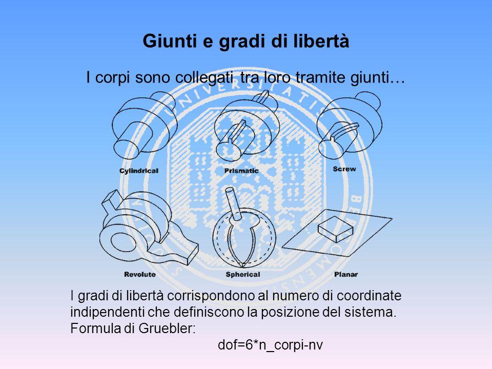Giunti e gradi di libertà I corpi sono collegati tra loro tramite giunti… I gradi di libertà corrispondono al numero di coordinate indipendenti che de