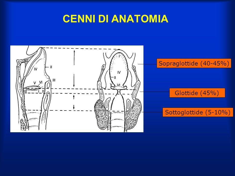 TUMORI MALIGNI DELLA LARINGE STORIA NATURALE E VIE DI DIFFUSIONE SEDE SOVRAGLOTTICA (40-45%) Levoluzione dipende dalla sottosede dinsorgenza: - FACCIA LARINGEA DELLEPIGLOTTIDE: verso lo spazio preepiglottico attraverso la cartilagine e in alto alle vallecule - PLICHE ARIEPIGLOTTICHE: verso i seni piriformi e/o il vestibolo laringeo - FALSE CORDE: più frequentemente in alto verso lepiglottide - VENTRICOLO: lateralmente verso lo spazio paraglottico attraverso il cono elastico e da questo in perilaringe attraverso la membrana cricotiroidea; in alto alle false corde e in basso alle corde vocali (forme transglottiche) Ricca rete linfatica che attraverso lo spazio preepiglottico drena nei linfonodi subdigastrici ( % di interessamento linfonodale variabile dal 15 al 51% in relazione alla sottosede e al T)