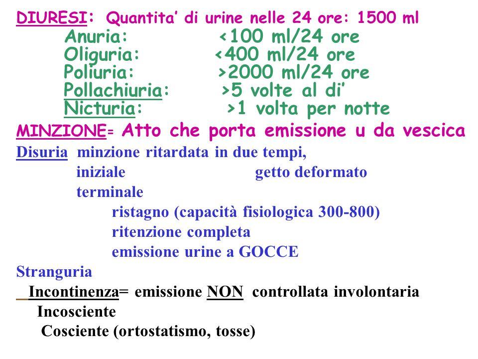DIURESI : Quantita di urine nelle 24 ore: 1500 ml Anuria: <100 ml/24 ore Oliguria: <400 ml/24 ore Poliuria: >2000 ml/24 ore Pollachiuria: >5 volte al