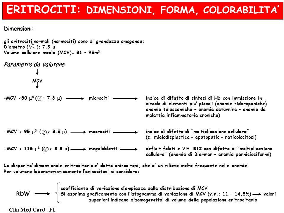 Clin Med Card –FI ERITROCITI: DIMENSIONI, FORMA, COLORABILITA Dimensioni: gli eritrociti normali (normociti) sono di grandezza omogenea: Diametro ( ): 7.3 Volume cellulare medio (MCV)= 81 – 95m 3 Parametro da valutare MCV -MCV <80 3 ( : 7.3 ) microcitiindice di difetto di sintesi di Hb con immissione in circolo di elementi piu piccoli (anemie sideropeniche) anemie talassemiche – anemia saturnina – anemie da malattie infiammatorie croniche) -MCV > 95 3 ( > 8.5 ) macrocitiindice di difetto di moltiplicazione cellulare (s.