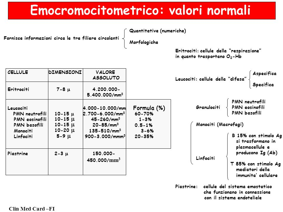Clin Med Card –FI Emocromocitometrico: valori normali Fornisce informazioni circa le tre filiere circolanti Quantitative (numeriche) Morfologiche Erit