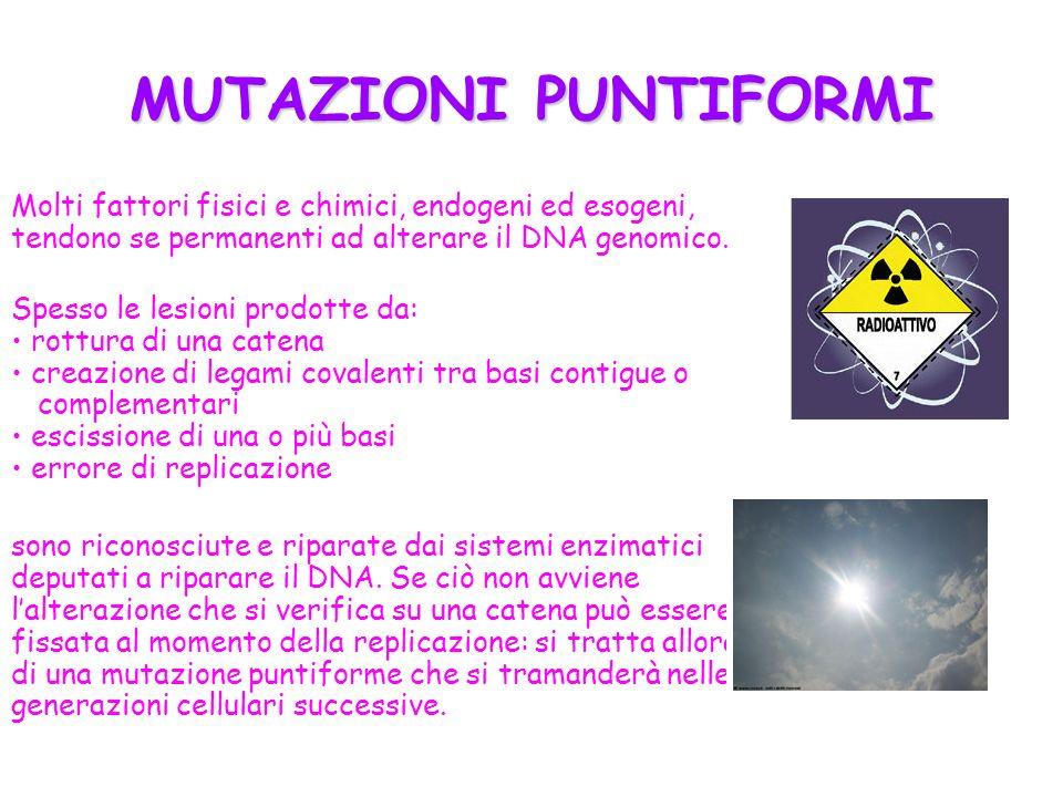 MUTAZIONI PUNTIFORMI Molti fattori fisici e chimici, endogeni ed esogeni, tendono se permanenti ad alterare il DNA genomico. Spesso le lesioni prodott