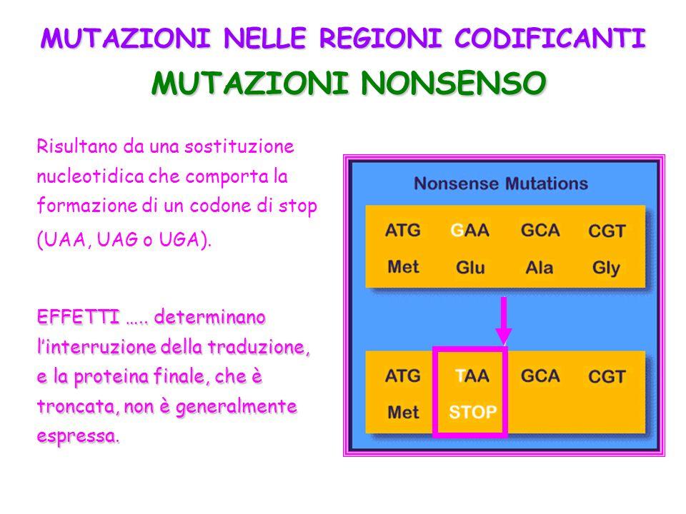 MUTAZIONI NELLE REGIONI CODIFICANTI MUTAZIONI NONSENSO Risultano da una sostituzione nucleotidica che comporta la formazione di un codone di stop (UAA