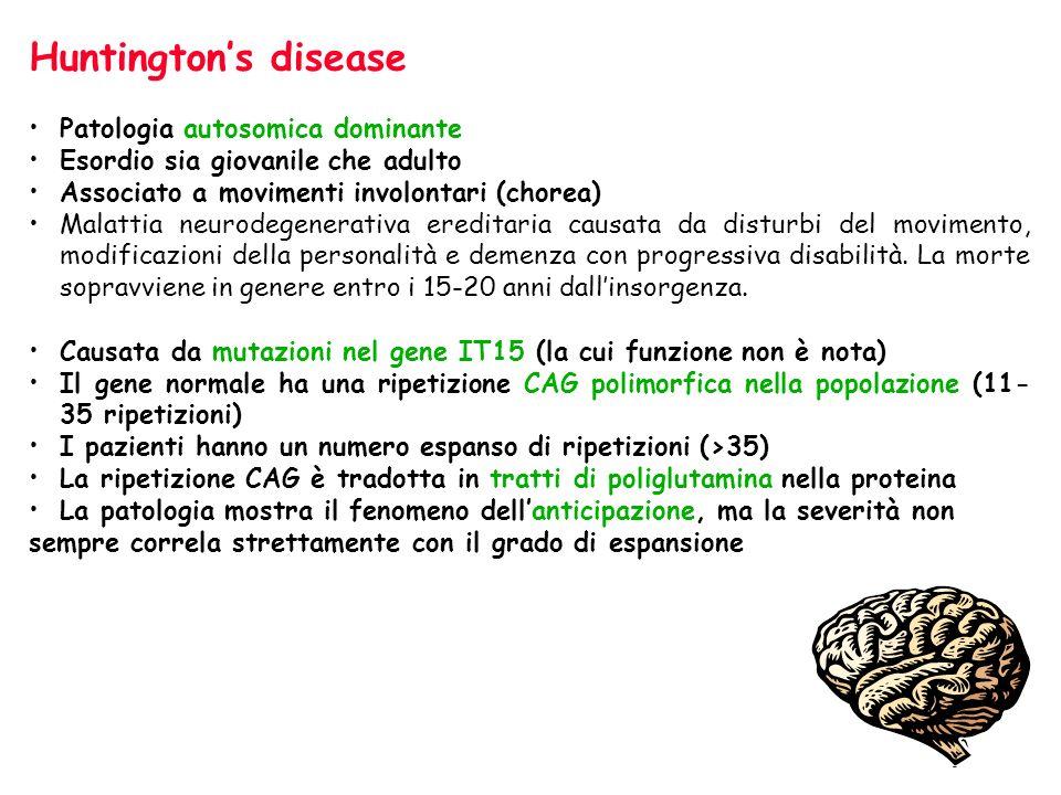 Huntingtons disease Patologia autosomica dominante Esordio sia giovanile che adulto Associato a movimenti involontari (chorea) Malattia neurodegenerat