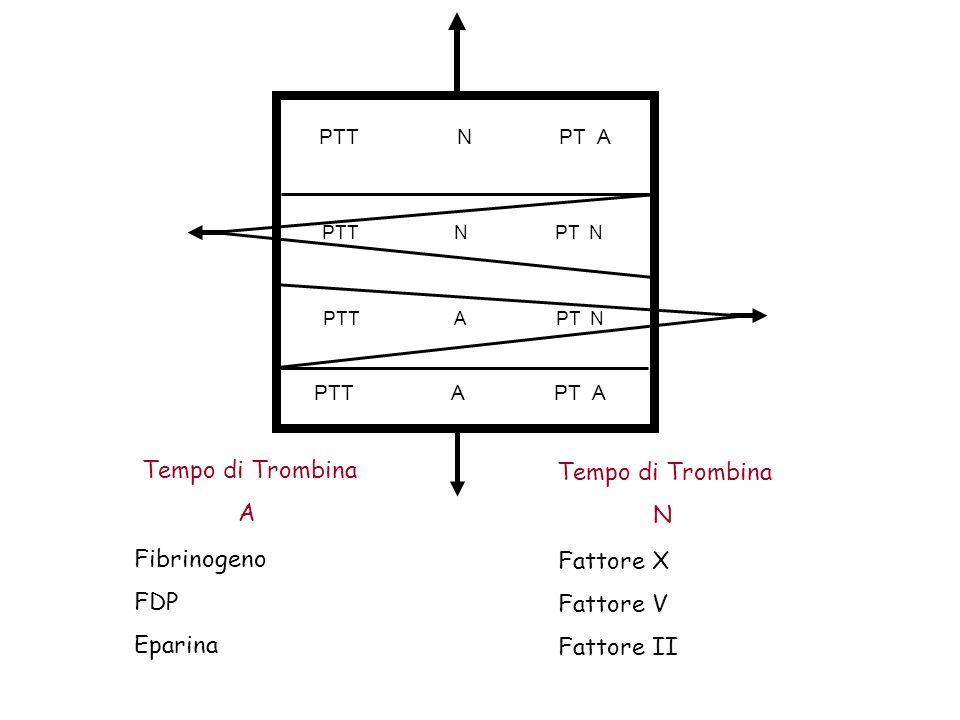 PTT N PT A PTT N PT N PTT A PT N PTT A PT A Tempo di Trombina A Tempo di Trombina N Fibrinogeno FDP Eparina Fattore X Fattore V Fattore II