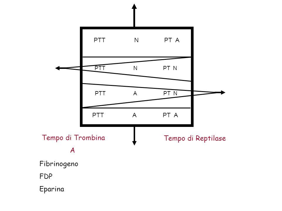PTT N PT A PTT N PT N PTT A PT N PTT A PT A Tempo di Trombina A Tempo di Reptilase Fibrinogeno FDP Eparina