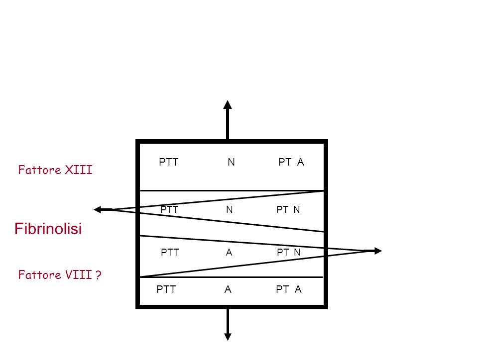 PTT N PT A PTT N PT N PTT A PT N PTT A PT A Fattore XIII Fibrinolisi Fattore VIII ?
