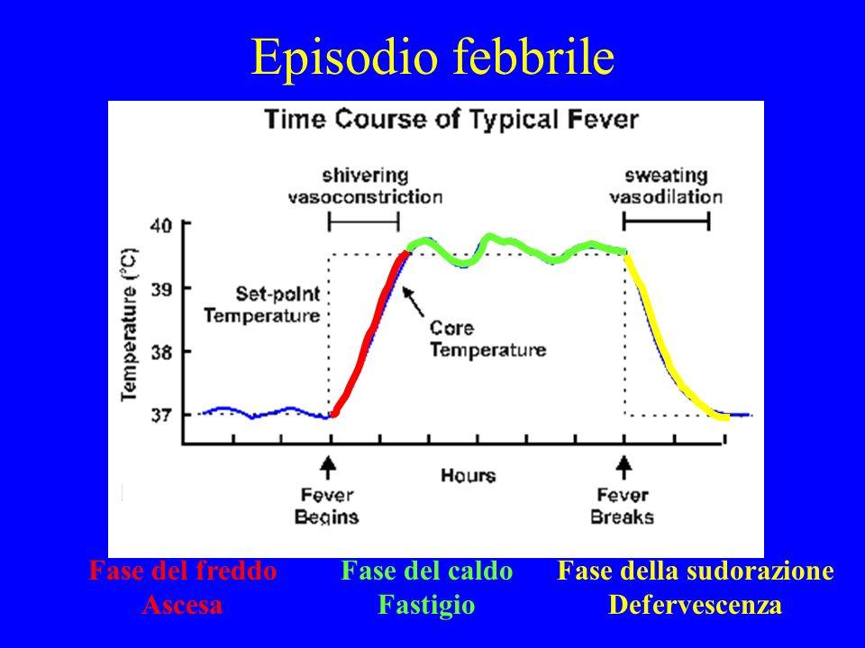 Episodio febbrile Fase del freddo Ascesa Fase del caldo Fastigio Fase della sudorazione Defervescenza