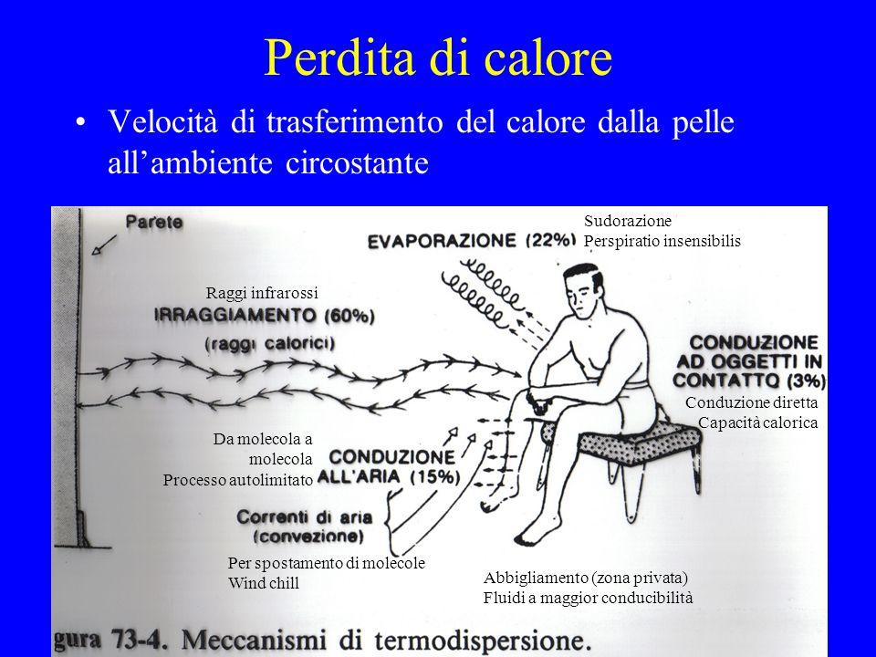 Tipi di febbre Febbre continua: la temperatura si mantiene costantemente sopra la norma (es.: febbre tifoide) Febbre remittente: ci sono notevoli oscillazioni giornaliere senza però mai scendere fino al livello normale –Febbre settica: con oscillazioni marcate e brusche Febbre intermittente: alternanza di periodi di febbre e apiressia (es.: malaria quotidiana, terzana o quartana) Febbre ricorrente: periodi febbrili di alcuni giorni intervallati da periodi di apiressia (es.: brucellosi) –Febbre ondulante: passaggio graduale tra i periodi di piressia a quelli di apiressia