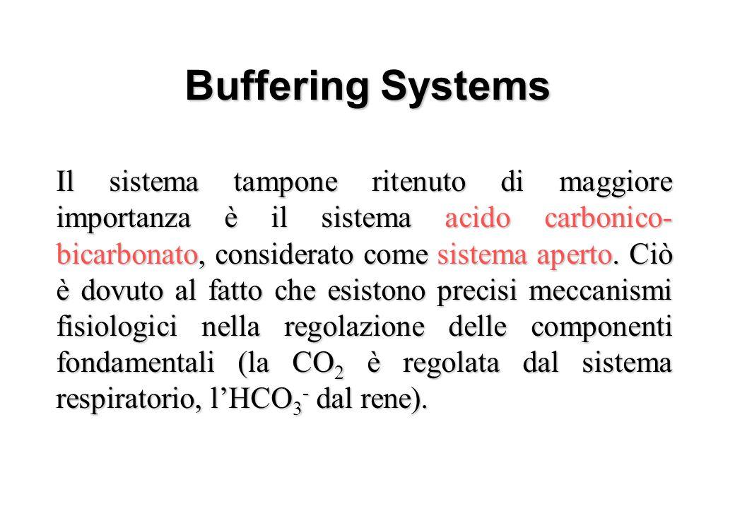 Buffering Systems – Carbonic Acid-Bicarbonate – Haemoglobin –Phosphate –Proteins –Ammonia –Misc organic acids Il sistema tampone ritenuto di maggiore