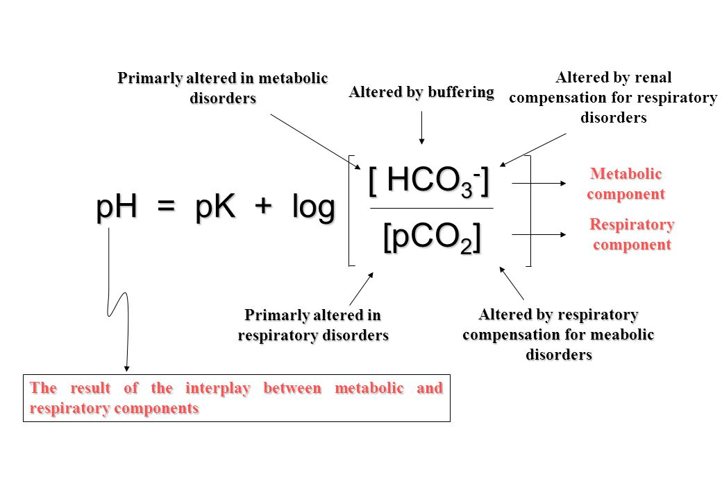 pH = pK + log [ HCO 3 - ] [pCO 2 ] [pCO 2 ] Altered by buffering Primarly altered in metabolic disorders Altered by renal compensation for respiratory