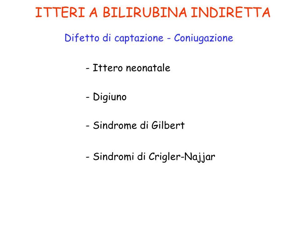 ITTERI A BILIRUBINA INDIRETTA Difetto di captazione - Coniugazione - Ittero neonatale - Digiuno - Sindrome di Gilbert - Sindromi di Crigler-Najjar