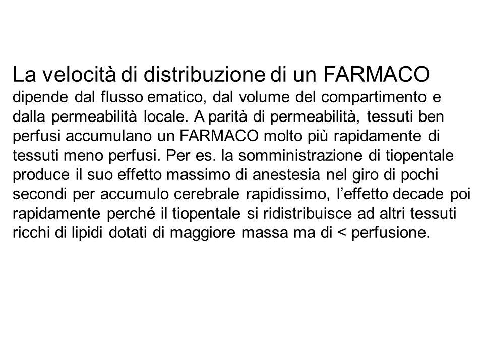 La velocità di distribuzione di un FARMACO dipende dal flusso ematico, dal volume del compartimento e dalla permeabilità locale. A parità di permeabil