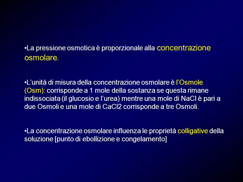 La pressione osmotica è proporzionale alla concentrazione osmolare. Lunità di misura della concentrazione osmolare è lOsmole (Osm): corrisponde a 1 mo