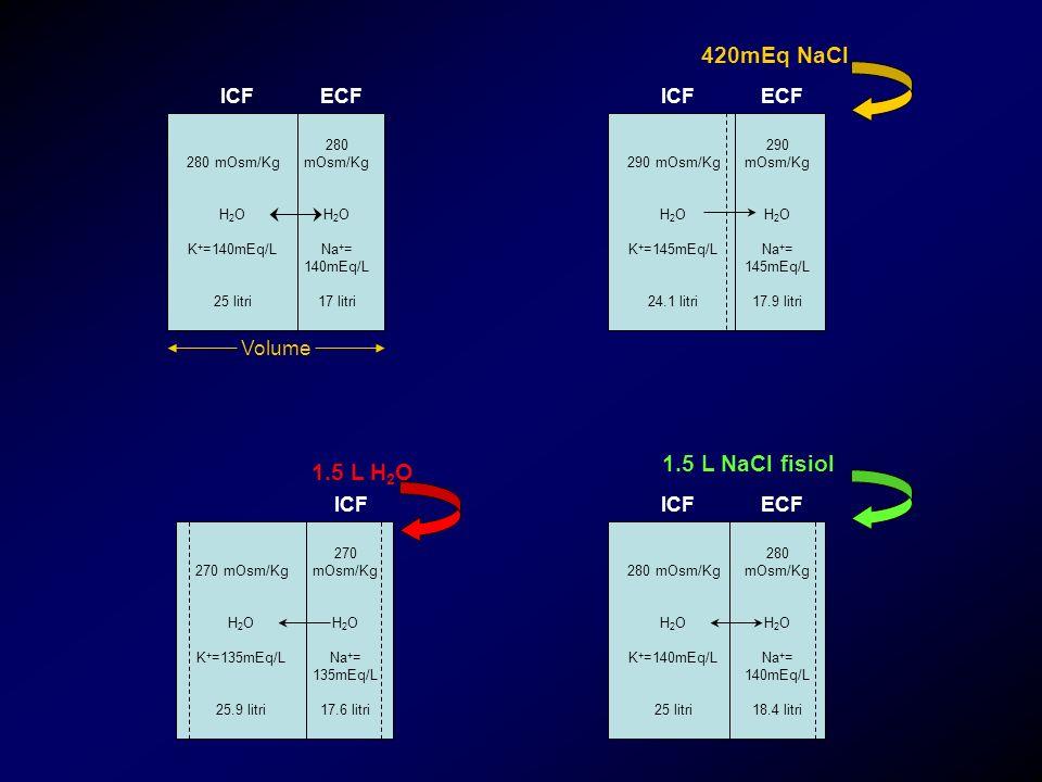 280 mOsm/Kg H 2 O K + =140mEq/L 25 litri 280 mOsm/Kg H 2 O Na + = 140mEq/L 17 litri ICF ECF 290 mOsm/Kg H 2 O K + =145mEq/L 24.1 litri 290 mOsm/Kg H 2