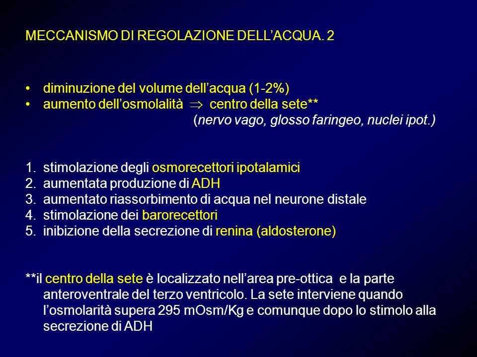 diminuzione del volume dellacqua (1-2%) aumento dellosmolalità centro della sete** (nervo vago, glosso faringeo, nuclei ipot.) 1.stimolazione degli os