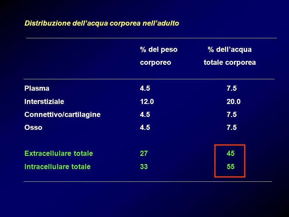 Distribuzione dellacqua corporea nelladulto % del peso % dellacqua corporeo totale corporea Plasma4.57.5 Interstiziale12.020.0 Connettivo/cartilagine4