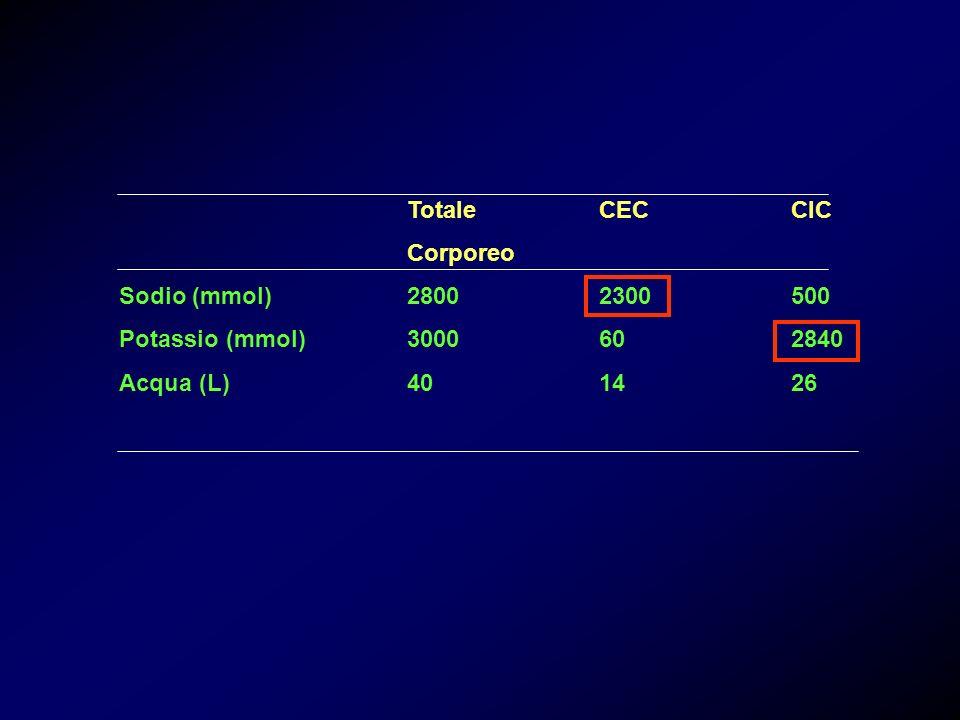 La concentrazione degli elettroliti è indicata in meq/l (milliequivalenti/litro); il milliequivalente è la millesima parte del peso atomico di uno ione, espresso in grammi, diviso per il numero di cariche elettriche presenti nello ione stesso.