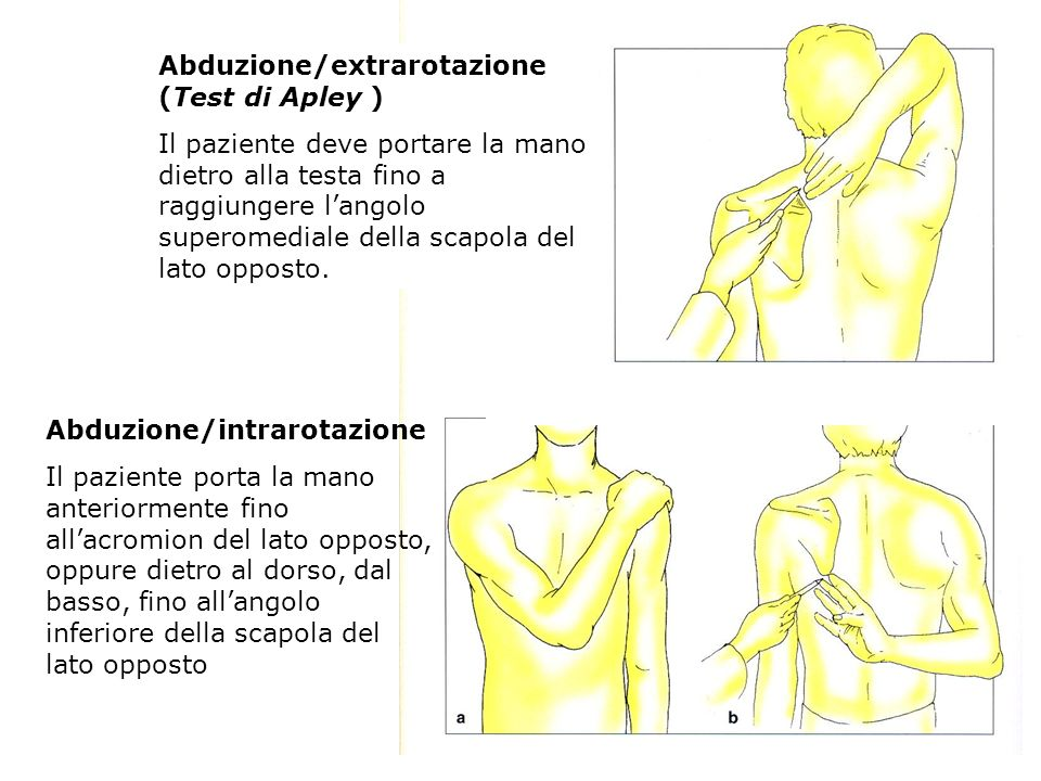 Abduzione/extrarotazione (Test di Apley ) Il paziente deve portare la mano dietro alla testa fino a raggiungere langolo superomediale della scapola de
