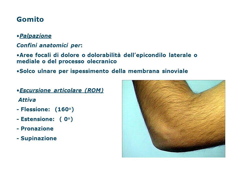 Gomito Palpazione Confini anatomici per: Aree focali di dolore o dolorabilità dellepicondilo laterale o mediale o del processo olecranico Solco ulnare