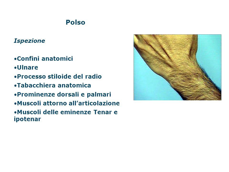 Polso Ispezione Confini anatomici Ulnare Processo stiloide del radio Tabacchiera anatomica Prominenze dorsali e palmari Muscoli attorno allarticolazio