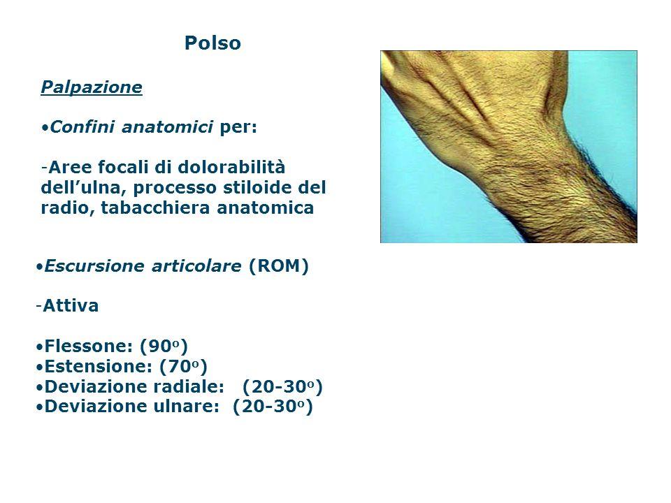 Polso Palpazione Confini anatomici per: -Aree focali di dolorabilità dellulna, processo stiloide del radio, tabacchiera anatomica Escursione articolar