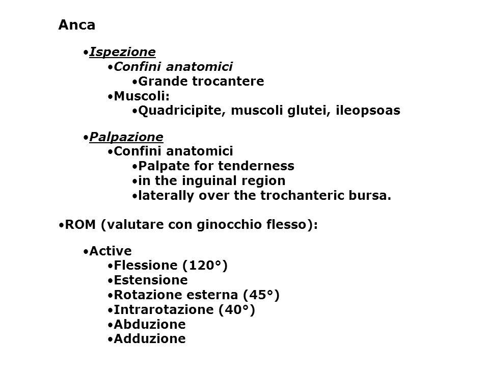 Anca Ispezione Confini anatomici Grande trocantere Muscoli: Quadricipite, muscoli glutei, ileopsoas Palpazione Confini anatomici Palpate for tendernes