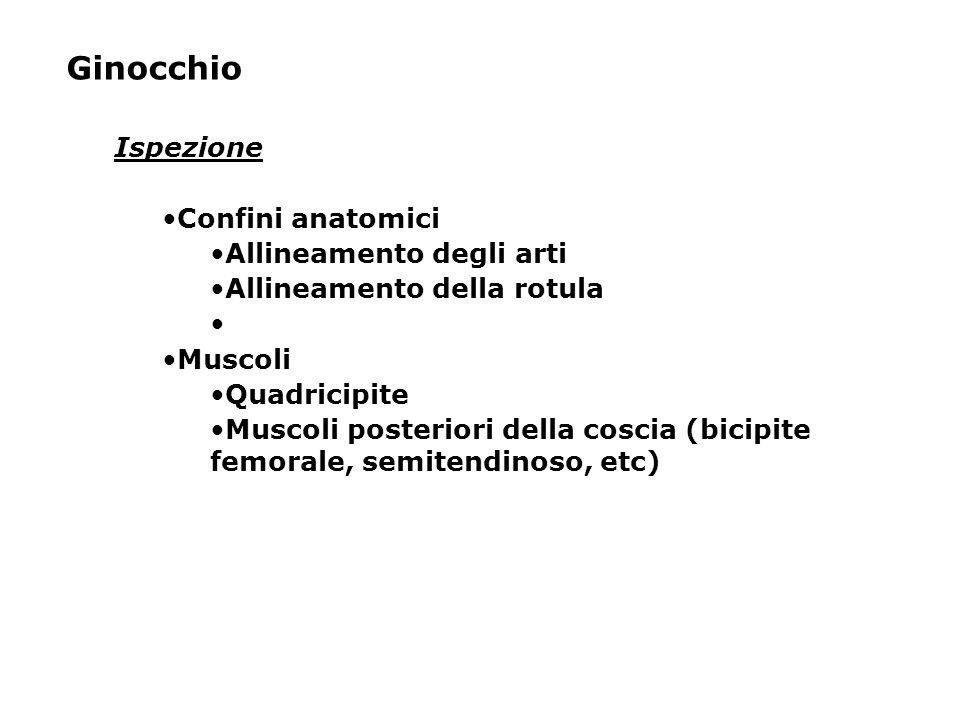 Ginocchio Ispezione Confini anatomici Allineamento degli arti Allineamento della rotula Muscoli Quadricipite Muscoli posteriori della coscia (bicipite