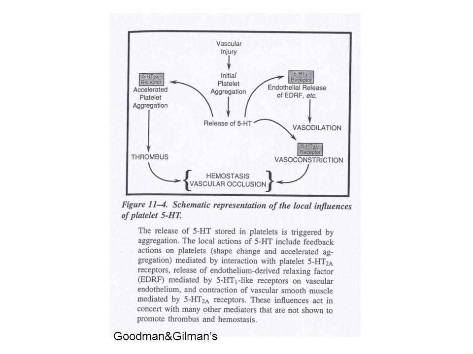 melatonina 5-HT N- acetilase o-metil- transferasi Sintesi e metabolismo della serotonina